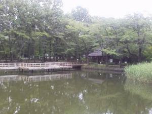 鶴ヶ島運動④