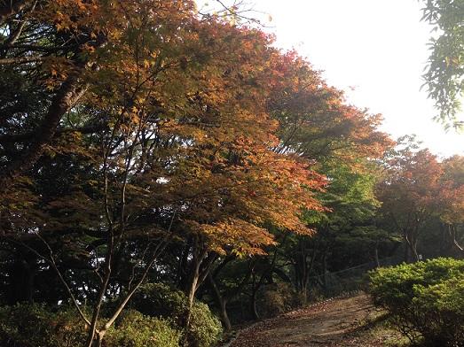 源氏山96