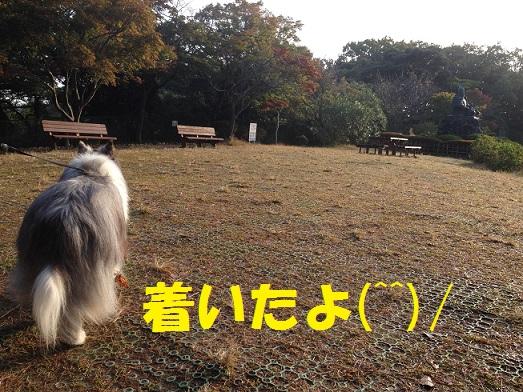 源氏山93