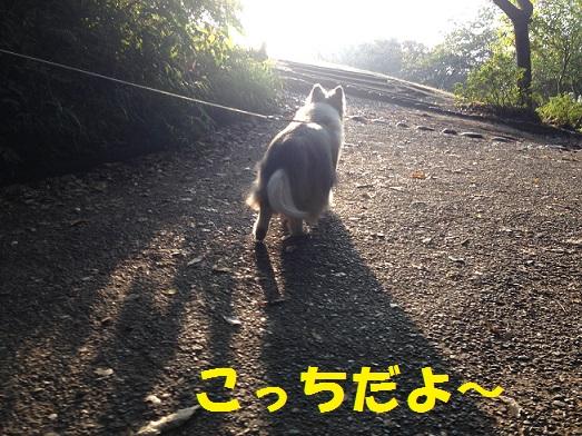 源氏山92