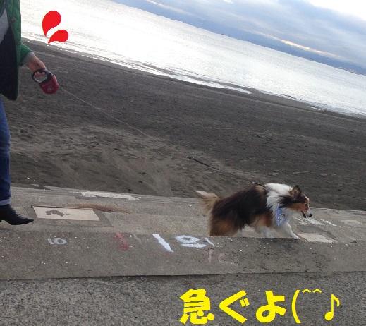 江ノ島95