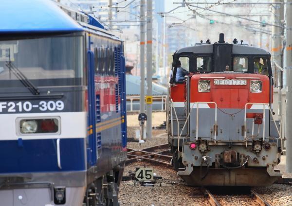 AM9P1493_1.jpg