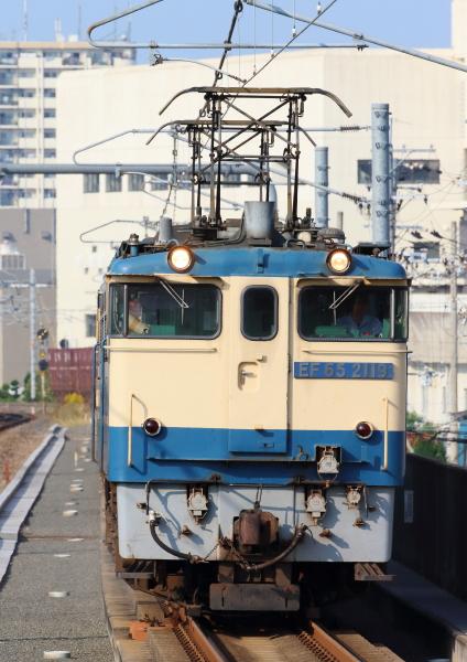 AM9P1772_1.jpg