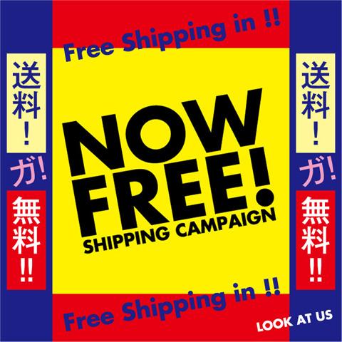 2015_free_shipping_img_480.jpg