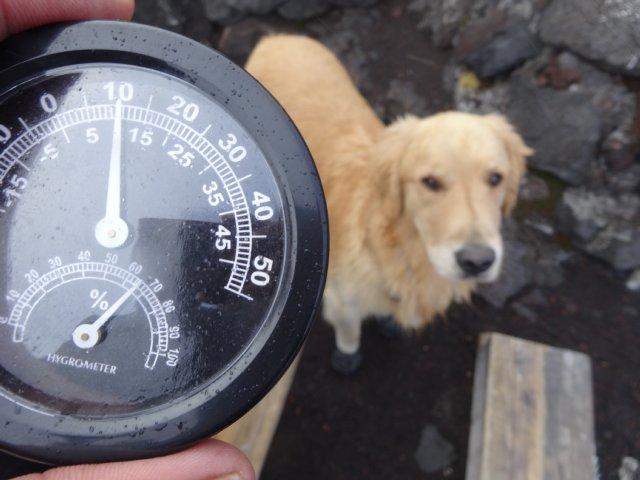 富士山 須走口 犬登山 2015-10-16 243