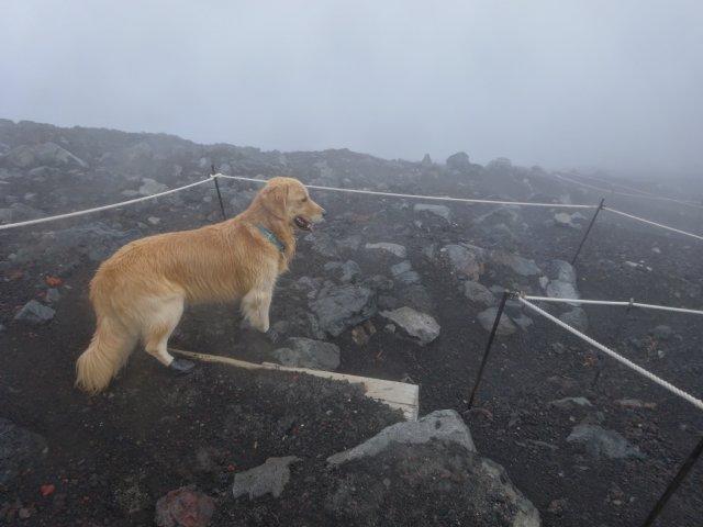 富士山 須走口 犬登山 2015-10-16 249