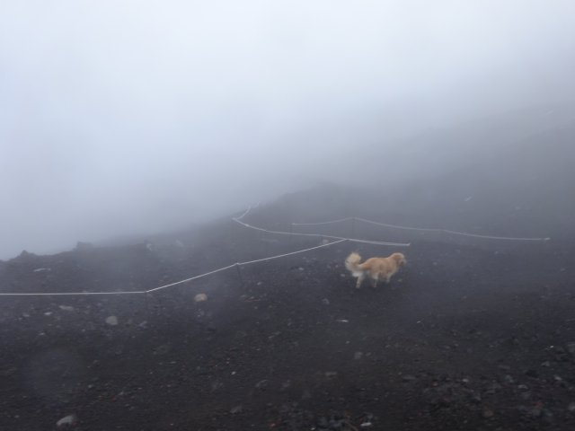 富士山 須走口 犬登山 2015-10-16 250
