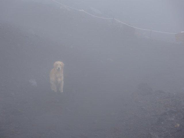 富士山 須走口 犬登山 2015-10-16 254