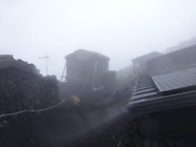 富士山 須走口 犬登山 2015-10-16 256