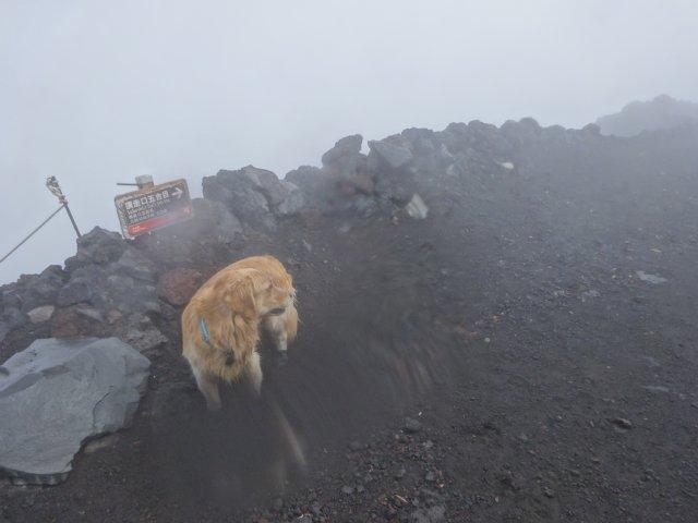 富士山 須走口 犬登山 2015-10-16 257