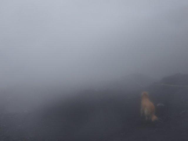 富士山 須走口 犬登山 2015-10-16 266