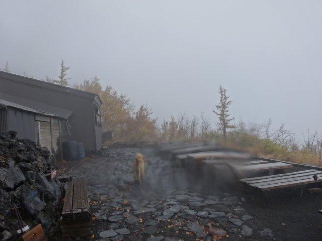 富士山 須走口 犬登山 2015-10-16 271