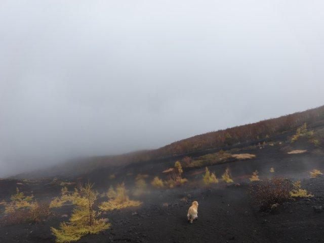 富士山 須走口 犬登山 2015-10-16 273