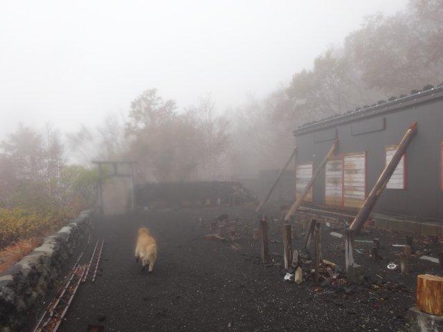 富士山 須走口 犬登山 2015-10-16 274