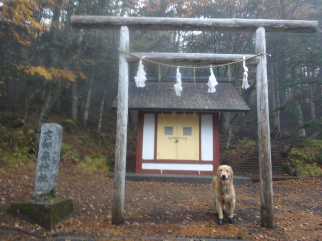 富士山 須走口 犬登山 2015-10-16 279