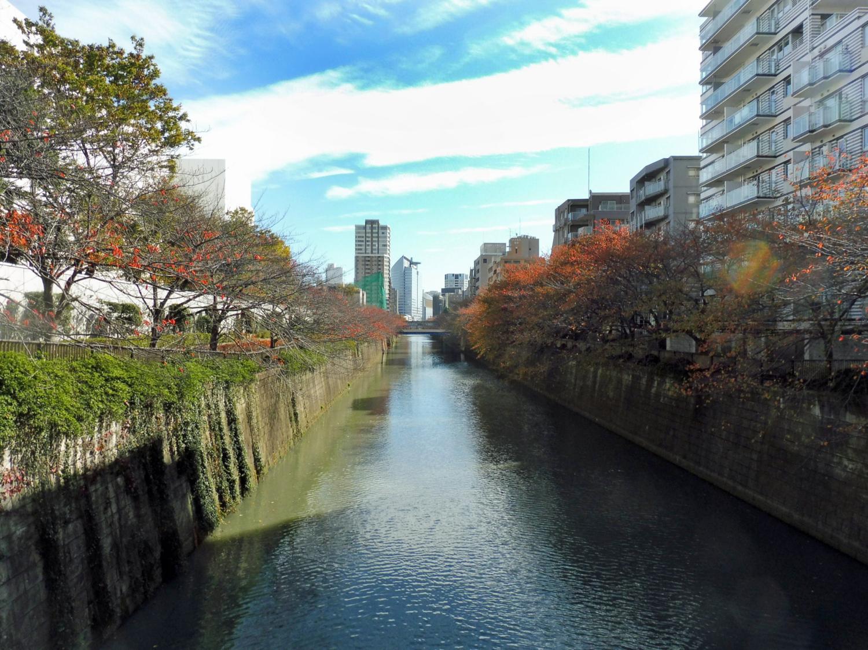 th_目黒川1