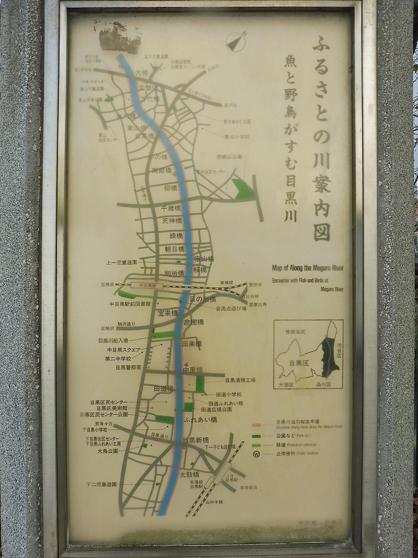 th_目黒川5