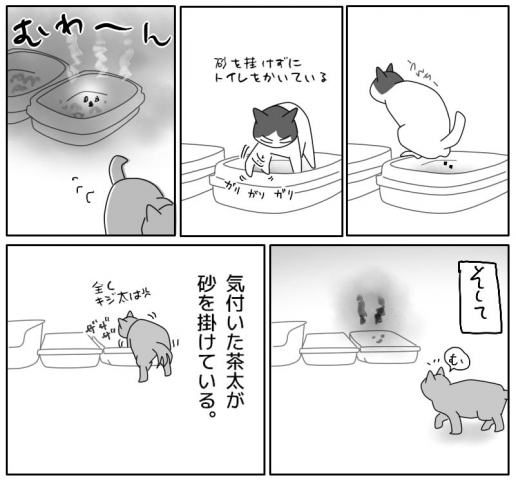 トイレ事情-3