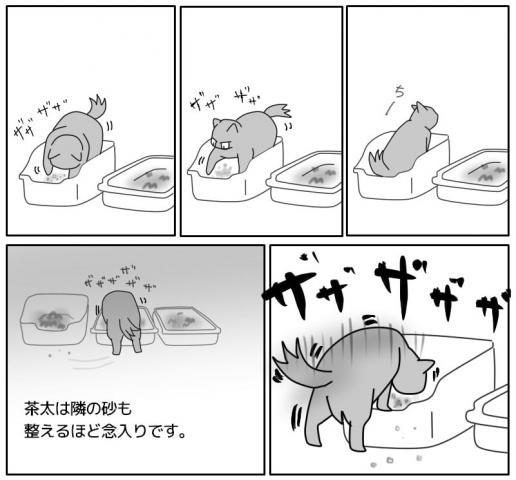 トイレ事情-2