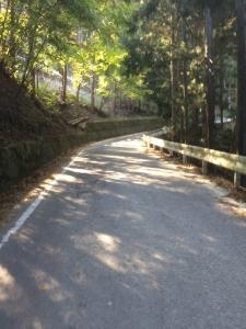 Sajiki_Ochiai_Tsurugisan_093.jpg