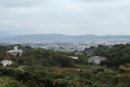 小田原市街展望