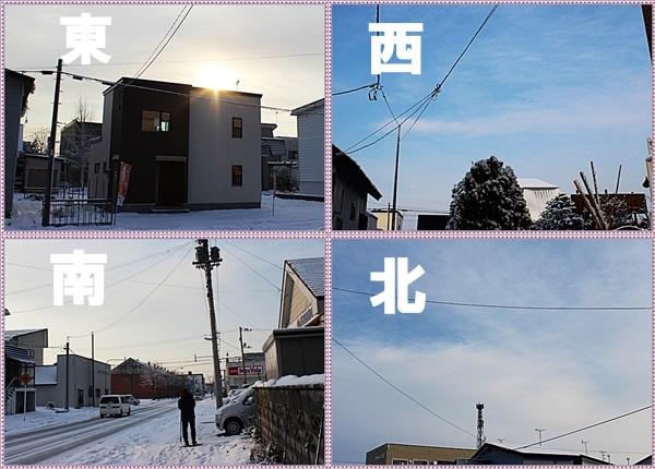 IMG_0020-tilea.jpg