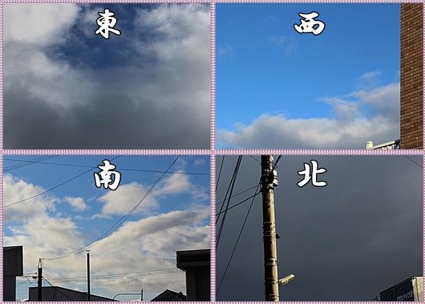 IMG_2808-tilea.jpg