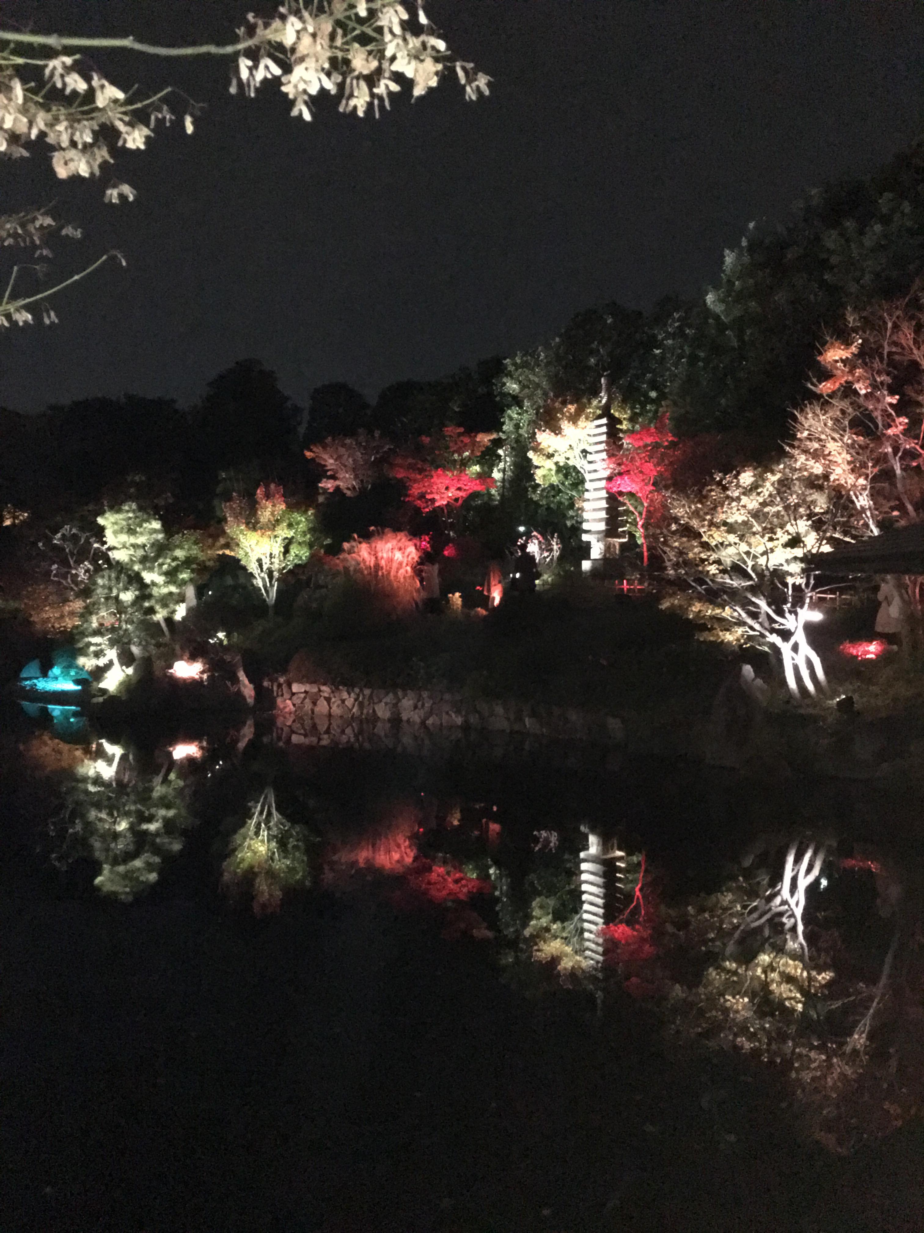 目白庭園1