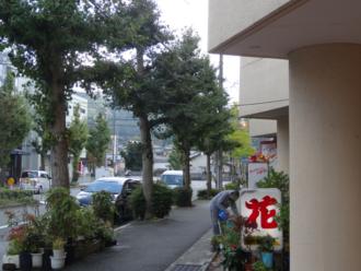けいおん!聖地巡礼 お花屋さん 修学院駅東側(北山通)