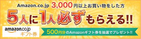 Amazonも、3,000円以上の買物で、5人に1人Amazonギフト券500円分とのキャンペーンを開催。