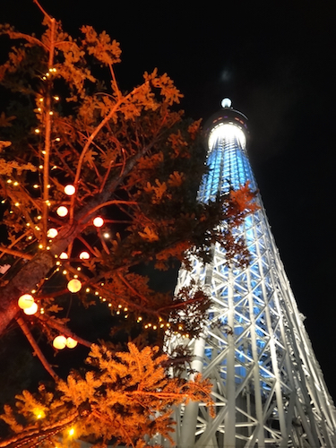 20151031-11-2.jpg