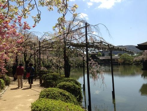 京都4月ブ12