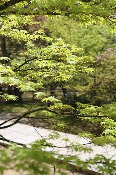 京都4月ブ30