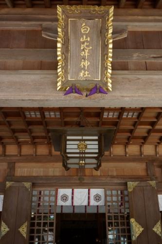 5社殿 (800x1200)