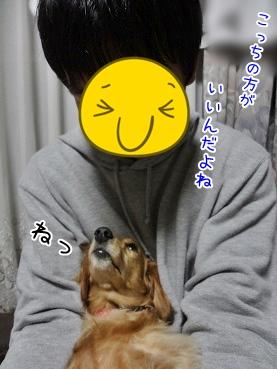 kinako3551.jpg