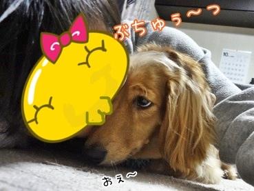 kinako3577.jpg