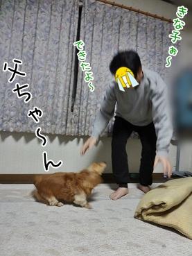 kinako3584.jpg