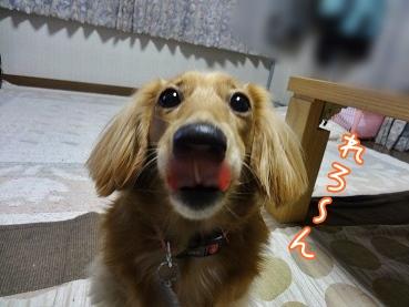 kinako3596.jpg