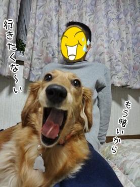 kinako3645.jpg