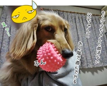 kinako3677.jpg