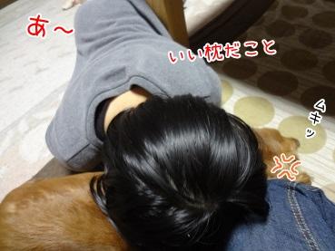 kinako3684.jpg
