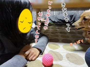 kinako3687.jpg