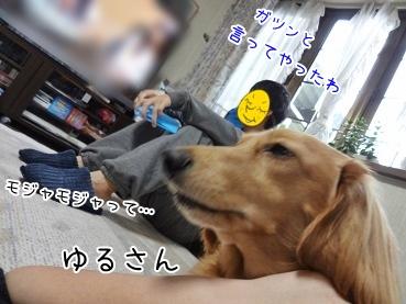 kinako3697.jpg