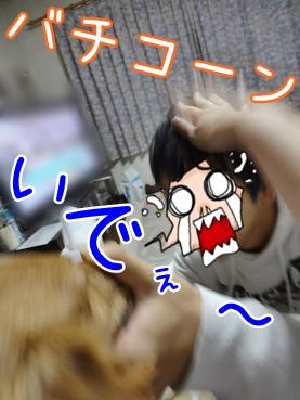kinako3705.jpg