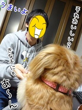 kinako3707.jpg