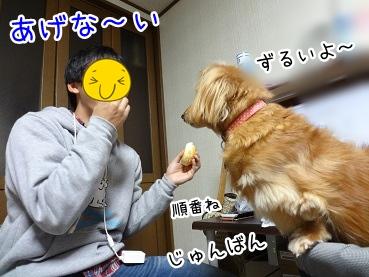 kinako3711.jpg