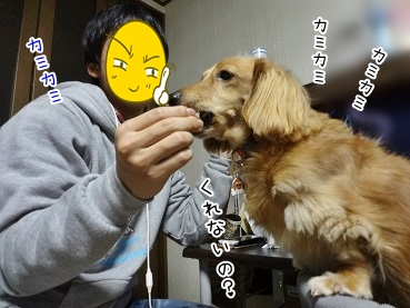 kinako3712.jpg