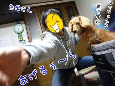 kinako3713.jpg