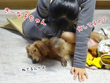 kinako3719.jpg