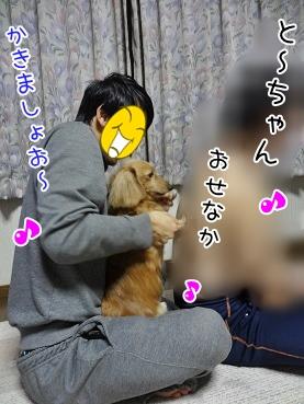 kinako3736.jpg